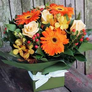 گل های نارنجی