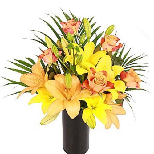 گلهای لیلیوم خورشیدی